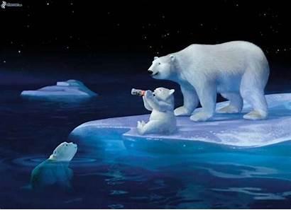 Polar Night Bear Wallpapers