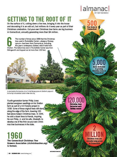stats christmas trees cut a tree in connecticut this weekend our