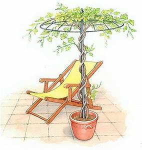 Sun Garden Schirm : best 25 shade flowers ideas on pinterest shade garden plants shade plants and shade loving ~ Orissabook.com Haus und Dekorationen