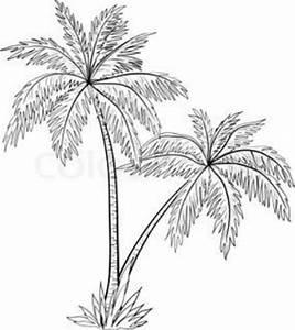 Imagenes de palmeras para dibujar en caricatura | Imagenes ...
