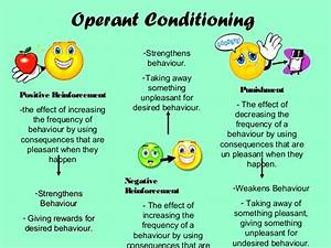 Operant conditioning and reinforcement (Psychology A-Level)