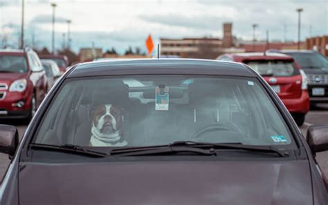 Explore how to navigate the claims process if your car is stolen. What Does Insurance Cover if Your Car is Stolen? - RateSplitter