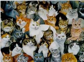 just cats cats 103 quot just cats quot 1000 jigsaw puzzle