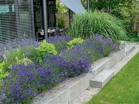 Lavendel Und Gräser by Vom Garten Bis Zur K 252 Che Ideen Mit Lavendel Garten