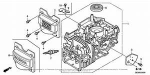 13hp Honda Engine Parts Diagram
