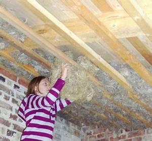 Dachdämmung Von Innen Kosten : bauen mit hanf ~ Lizthompson.info Haus und Dekorationen