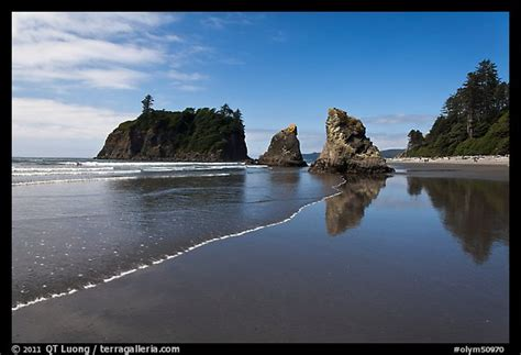 picturephoto ruby beach afternoon olympic national park