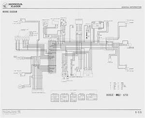 1983 Honda Xl600r Wiring Diagram