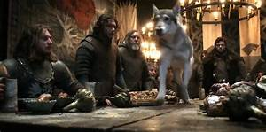 Grey Wind images Grey Wind and Robb HD wallpaper and ...
