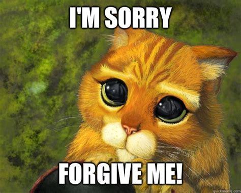 I'm Sorry Babe Please Forgive Me?  Im Sorry Quickmeme