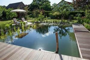 wo grun begeistert so entsteht ein schwimmteich garten With französischer balkon mit garten schwimmteich