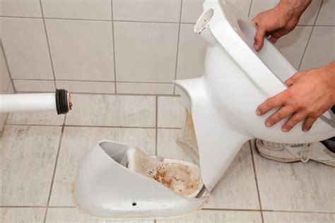 toilet replacement  reasons  upgrade