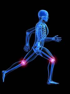 Physiotherapists Guide To Knee Pain