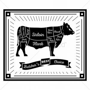 Butcher Cow Cuts Diagram Vector Image