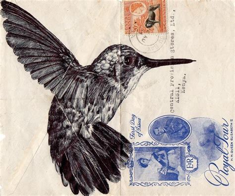 mark powell drawings  antique documents feather