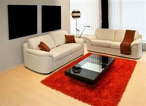 Tapis shaggy dans le salon un accessoire moderne et elegant for Tapis rouge avec canapé sits promo