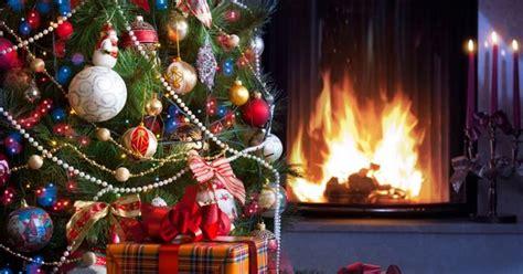 b q slashes christmas tree price to just 163 1 birmingham mail