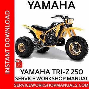 Yamaha Tri-z Yz250 Service Workshop Manual