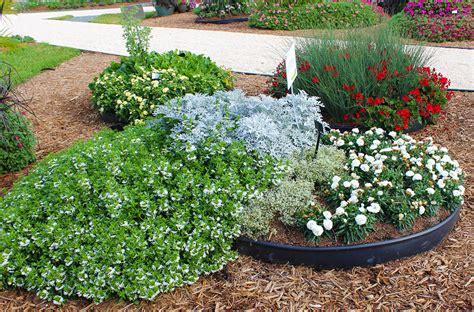 easy care garden ideas easy care garden ideas costa farms