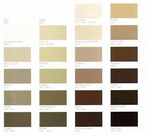 sejour salon With palettes de couleurs peinture murale 9 salon idees peinture amp couleurs sico couleur salon