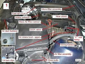 Help   U0026 39 01 325i  Xi Oil Leak  Idling Probs  Lense
