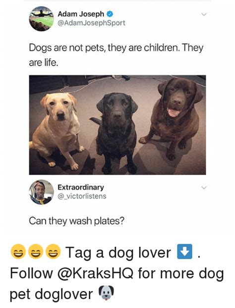 Dog Lover Meme - adam joseph dogs are not pets they are children they are