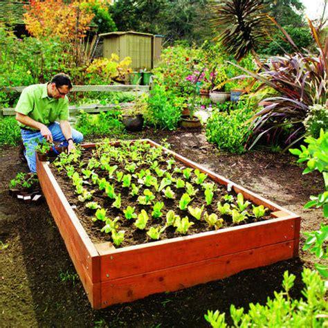 raised bed planting plan raised garden beds sunset