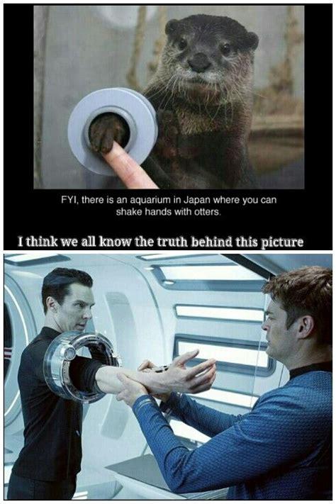 Benedict Cumberbatch Otter Meme - lol love the benedict otter memes star trek pinterest lost otter meme and the o jays