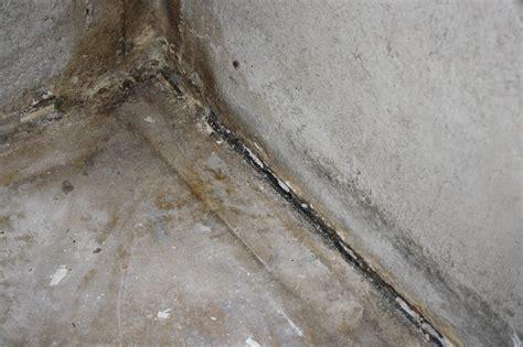 Water Coming In Basement Where Walls Meet Floor Seeping