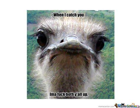Ostrich Meme - kevin hart ostrich by demonman101 meme center