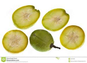 Umbrella Tree Fruit