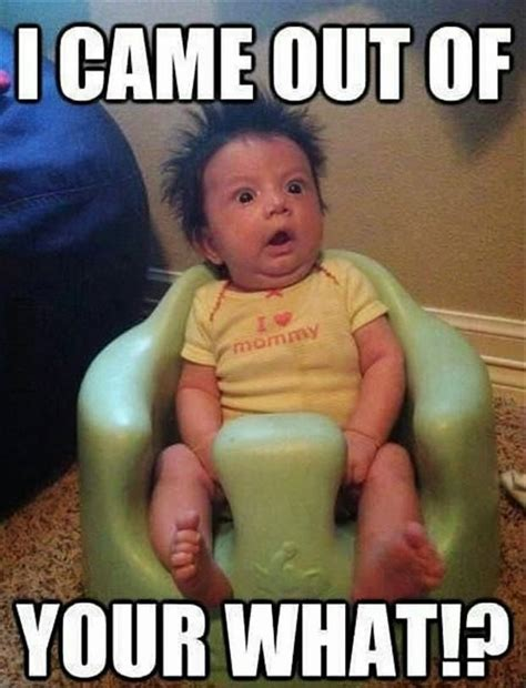 Funny Toddler Memes - where babies come from funny baby meme