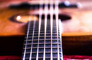 Best Acoustic Guitar Strings For Beginners  U2013 2020 Ultimate