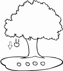 Apple Tree Clipart Black And White | Free download best ...