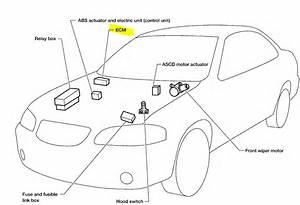 Nissan Xterra Ignition Wiring Diagram Nissan Xterra Cover Wiring Diagram