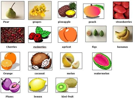 Fruit And Vegetables Vocabulary List Pdf