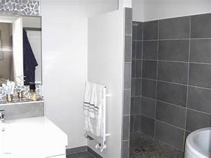 carrelage petite salle de bain ides With idee couleur salle de bain