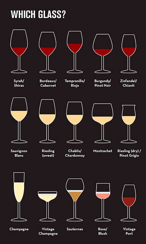 wine types everything you need to know about wine business insider