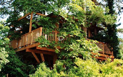 sull albero italia una casa sull albero un sogno di vacanza con i bambini