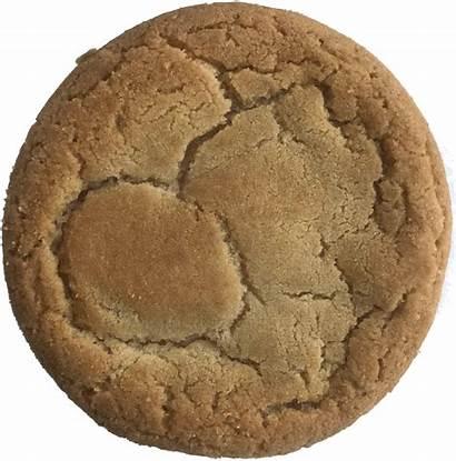 Plain Cookie Cookies Vanilla