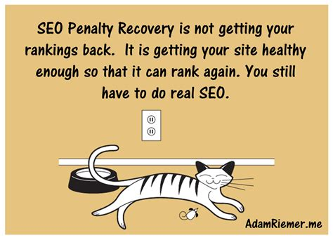 Seo Quotes by Seo Study Growth In A Competitive Niche