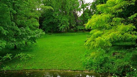 阿尔伯特卡恩日式花园,法国,森林公园,池塘,风景桌面壁纸高清大图预览1920x1080_风景壁纸下载_彼岸桌面