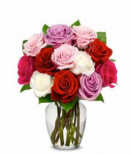 One Dozen Assorted Spring Roses at From You Flowers