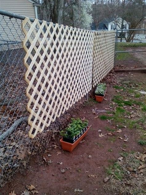 lattice yard ideas google search backyard fences