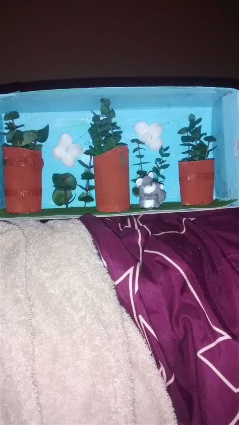 koala bear diorama     sons  grade project