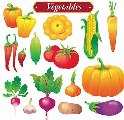 Vegetables Vegetable Fresh Vector Fruits Bright Colored