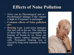 Noise Pollution. - ppt video online download