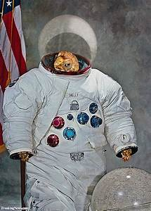 Funny Astronauts Pictures - Freaking News