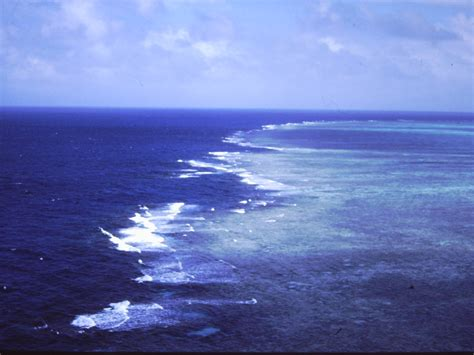 Great Barrier Reef is a remarkably efficient wave attenuator - Geology & Geophysics Blog