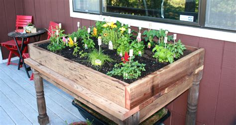 Garden In A Box by Handmade Herb Garden Box With Your Favorite Herbs